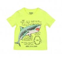 تی شرت پسرانه 13947 سایز 2 تا 7 سال مارک OSHKOSH