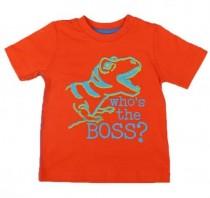 تی شرت پسرانه 13121 سایز بدو تولد تا 36 ماه