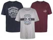 تی شرت مردانه 23730 مارک LIVERGY