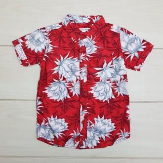 پیراهن پسرانه 24269 سایز 2 تا 11 سال مارک U.S POLO