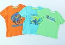 تی شرت پسرانه 100281 سایز 2 تا 6 سال مارک lupilu  محصول بنگلادش